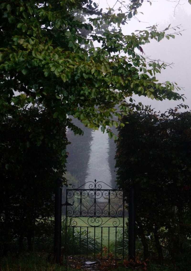 gate in mist