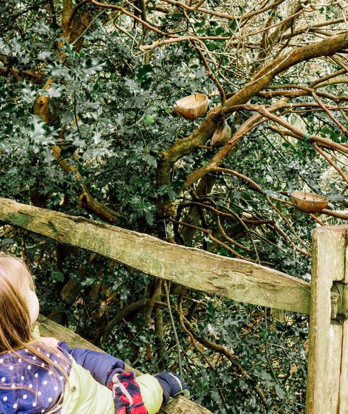 Looking at bird tree at Wakehurst