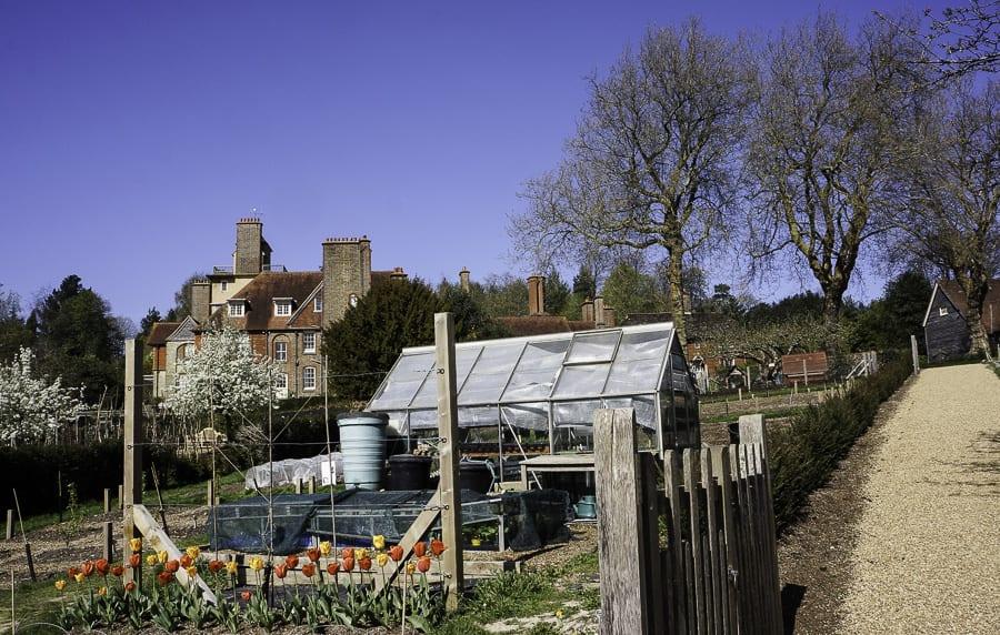 tanden and kitchen garden