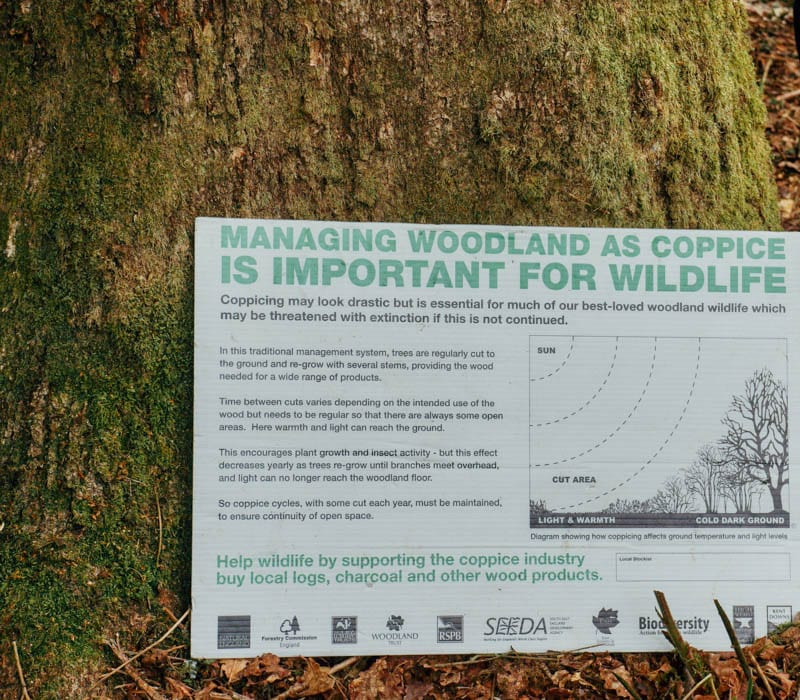Wakehurst coppice sign