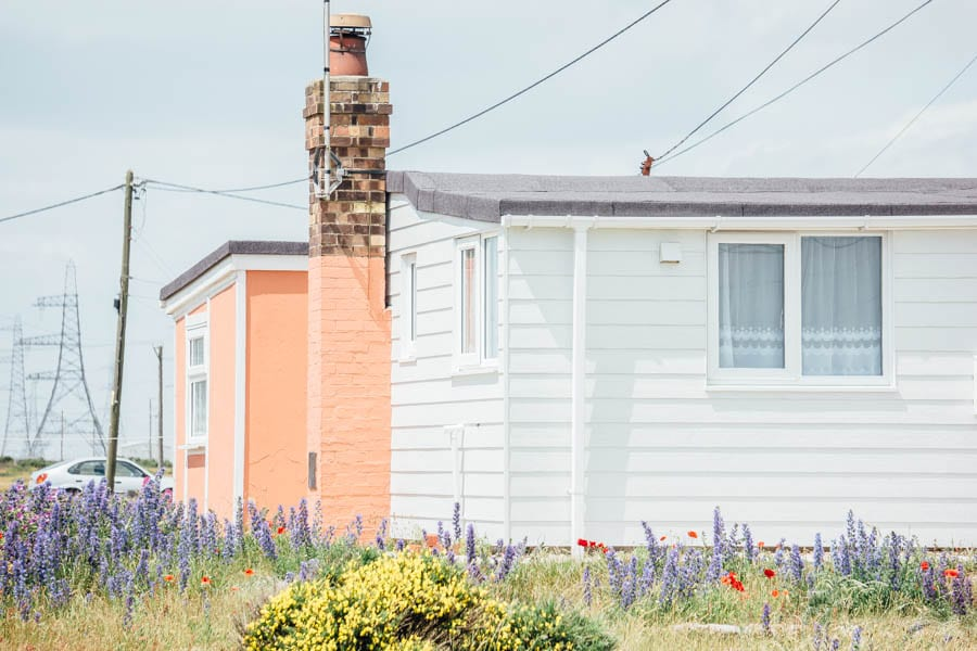 Dungeness flowers and white cottage