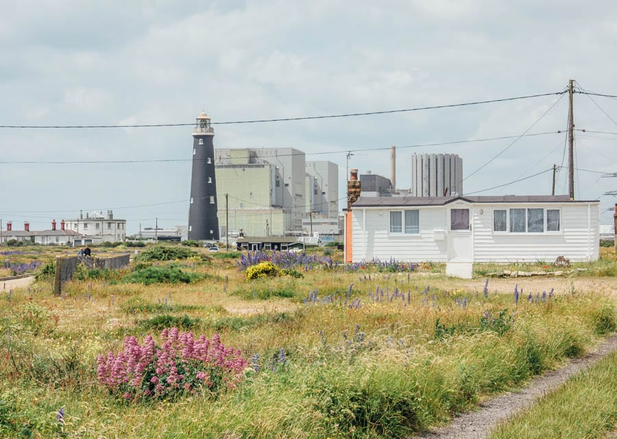 Dungeness flowers house and nuclear