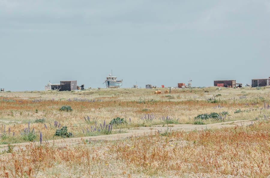 Shingle landscape and boats Dungeness