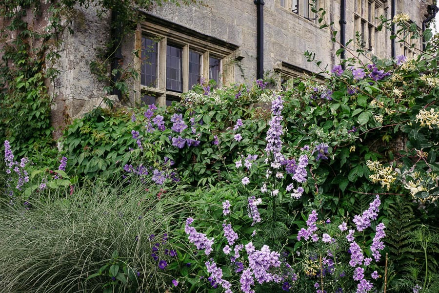 Gravetye Manor wall with climbing flowers