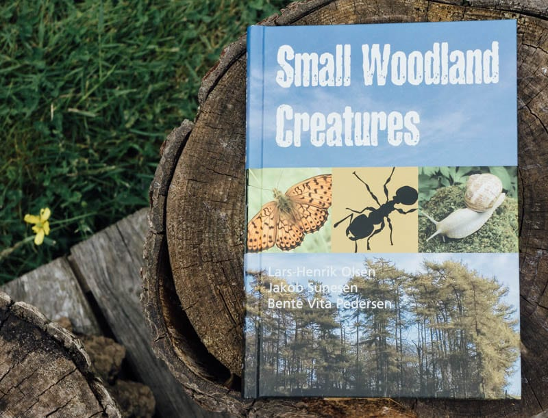 Small Woodland Creatures by Olsen Sunesen Pedersen