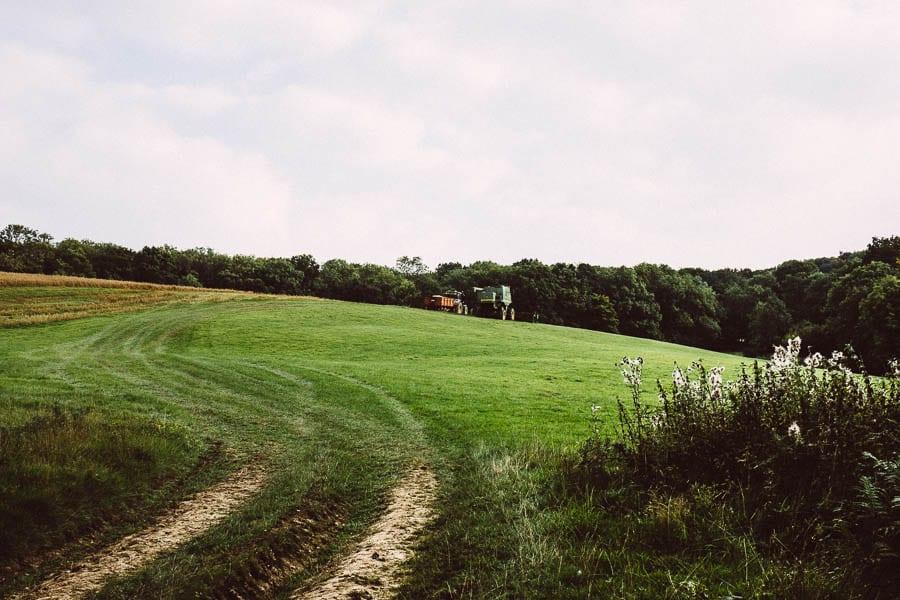 Harvesting grain from field