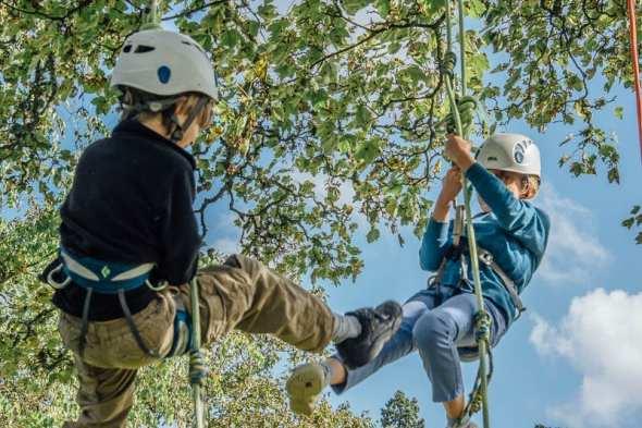 Twins kicking on tree climb