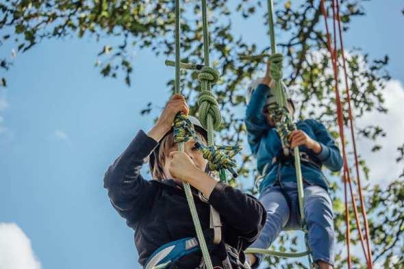 Twins starting tree climb