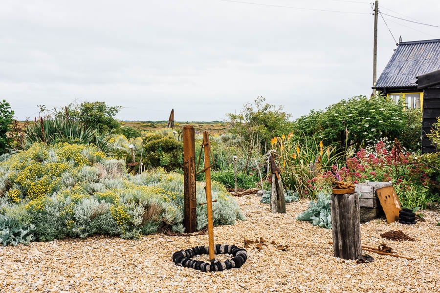 Derek Jarmans Garden flowers and driftwood