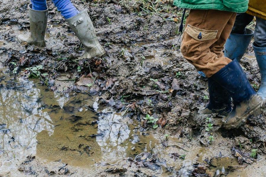 Mud Puddle Walk fun for kids