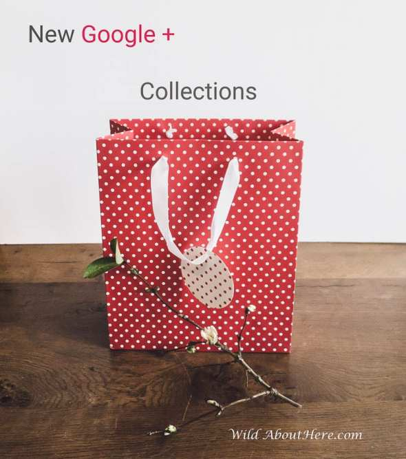 New Google Plus Collections Tips