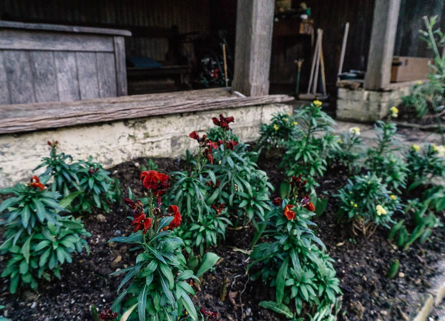 Gravetye February croquet pavilion