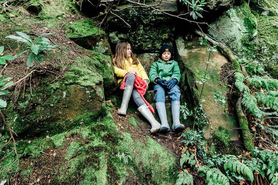 Wakehurst Rock Walk sandstone ledge with twins