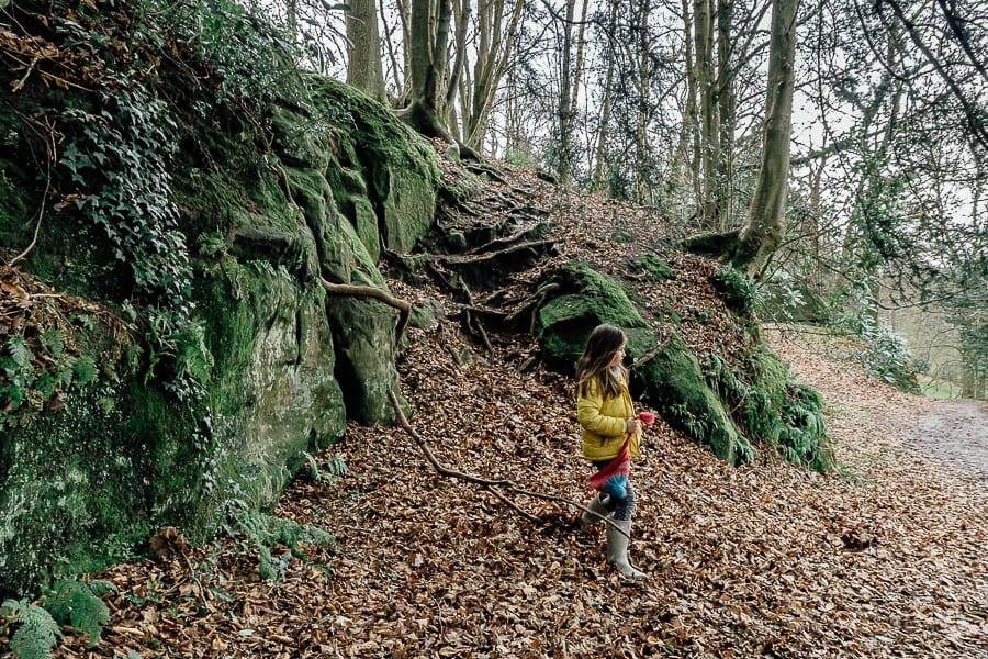 Wakehurst Rock Walk sandstone outcrops and Luce