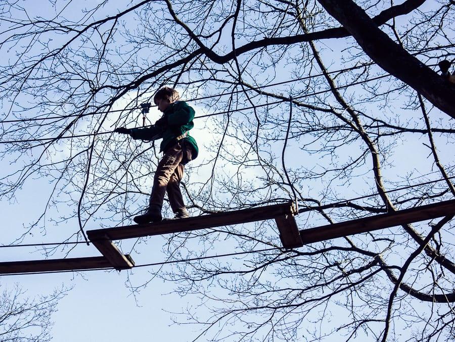 Treetop adventure child crossing bridge