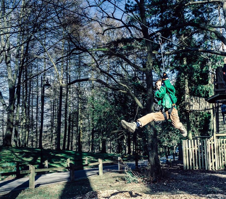 Treetop adventure on zipwire
