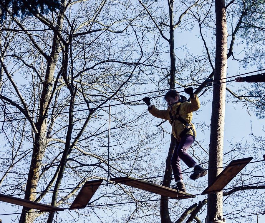 Treetop adventure planks on ropes