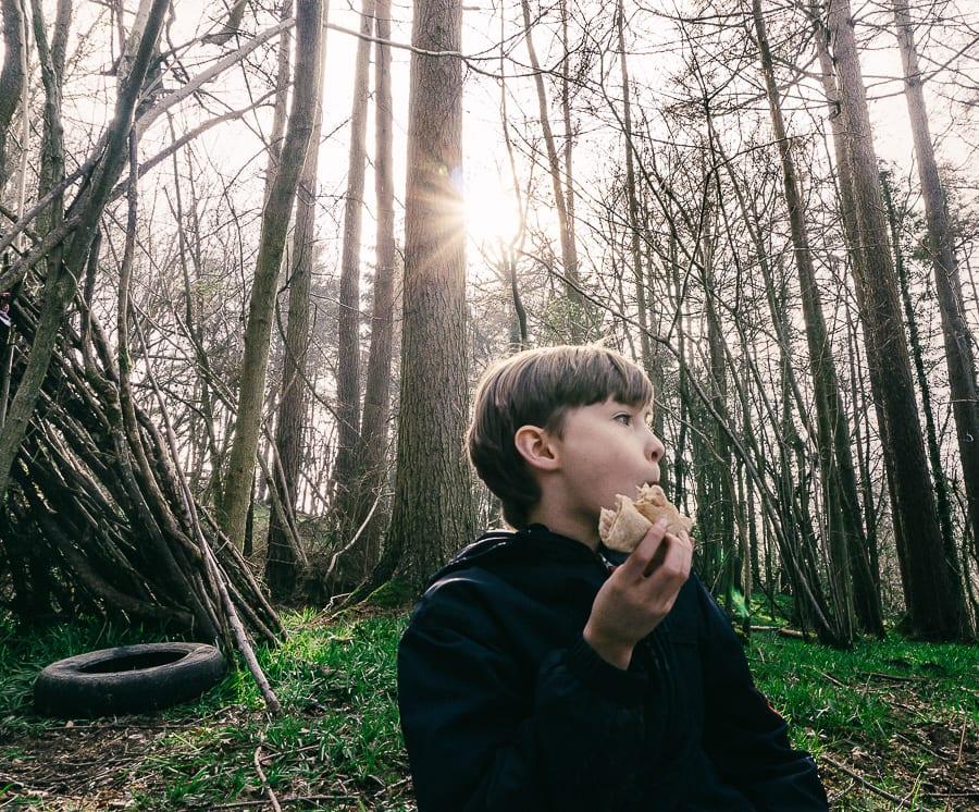 Woods picnic sandwich