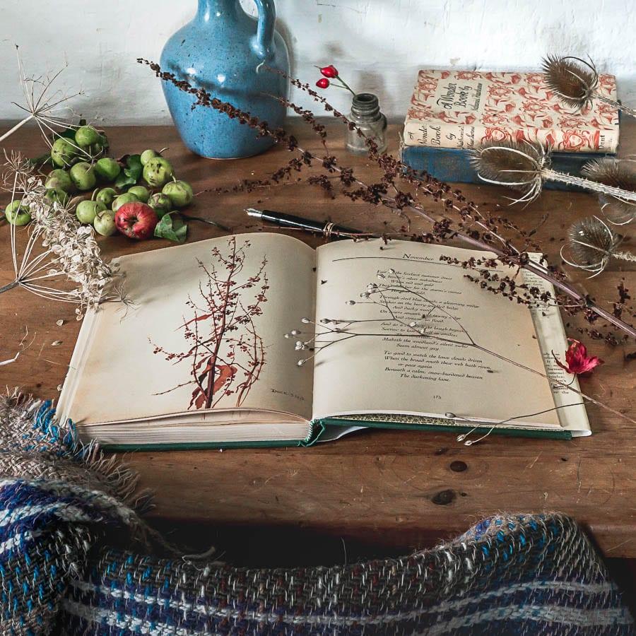 Wild flowers books changing season