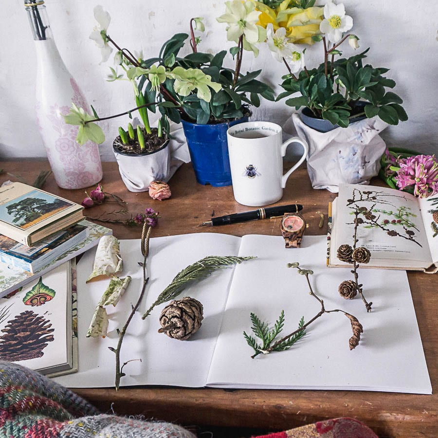 wood watch jord botanist desk