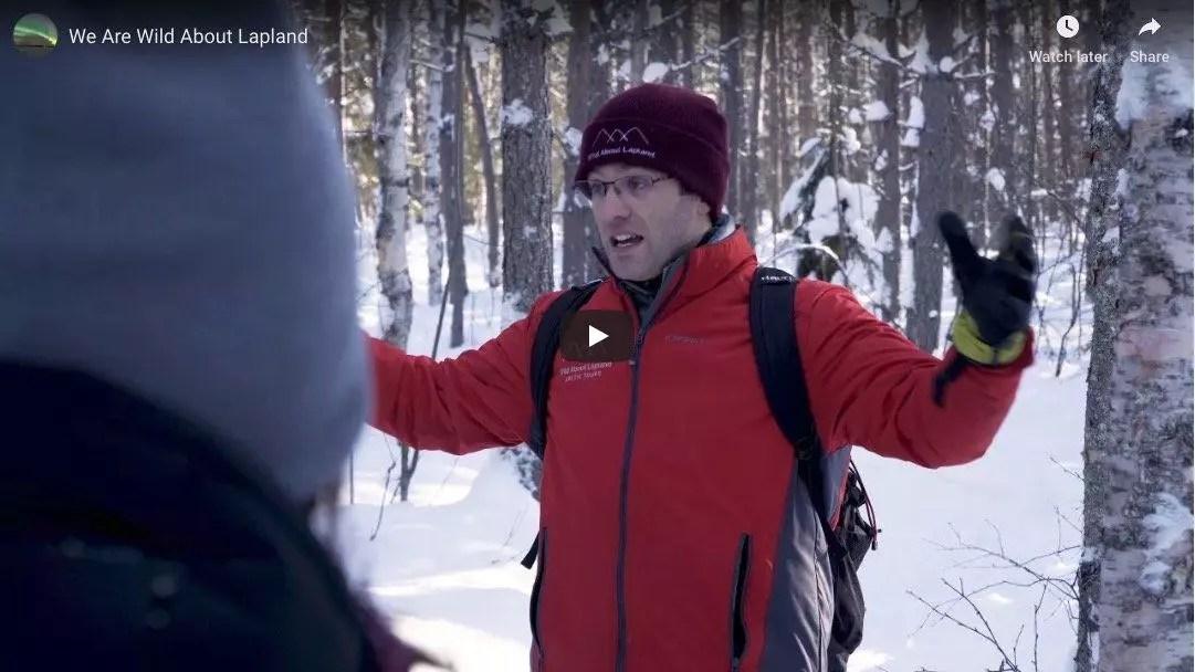 Northern Light Tours, Rovaniemi Excursions | Wild About Lapland
