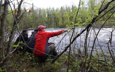 A Walk Through The Lapland Wilderness