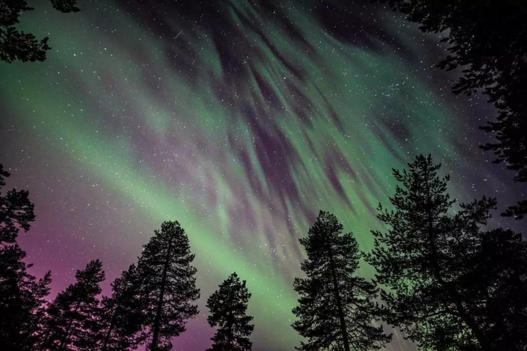 Northern lights, Wild About Lapland