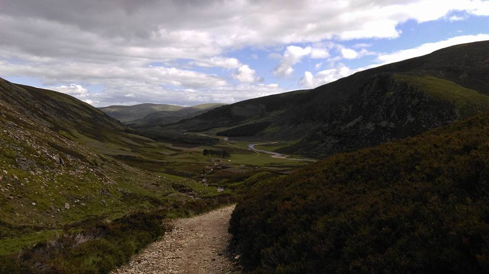 Nature in the Angus Glens