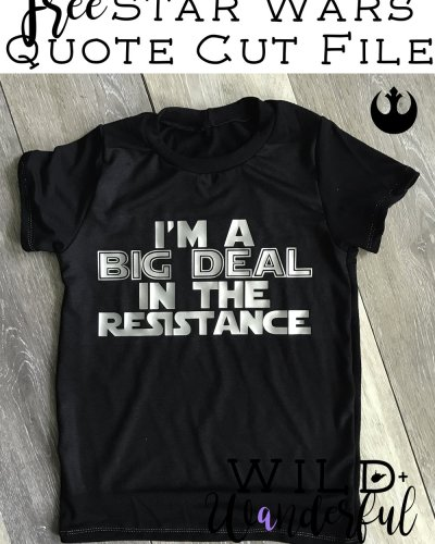 I'm a Big Deal in the Resistance :: Star Wars Day 2017
