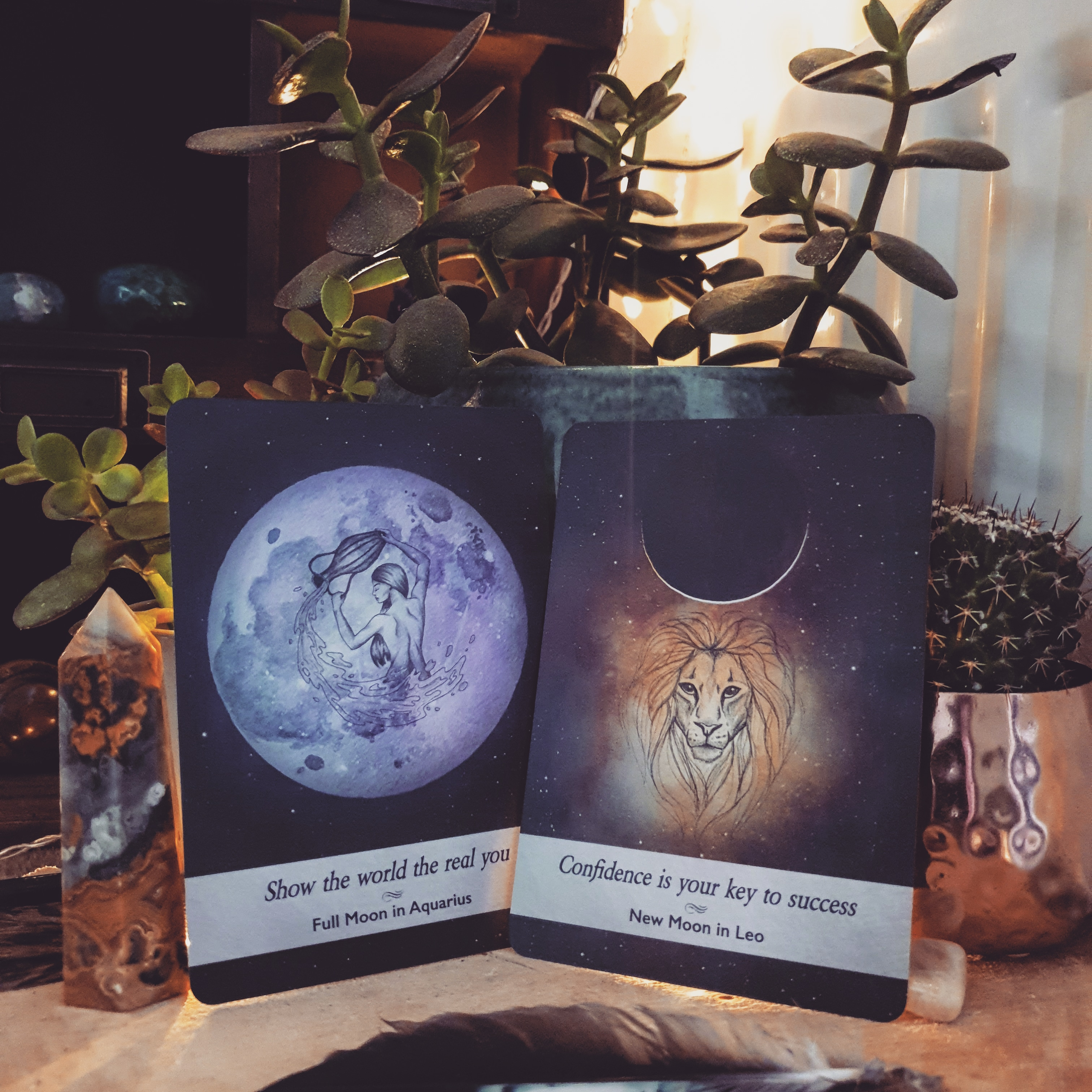 A New Zodiac Month Is Upon Us; Leo season has begun.