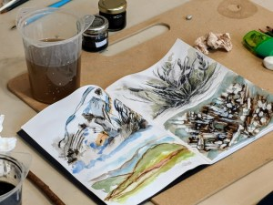 Sketching with watercolours and walnut ink