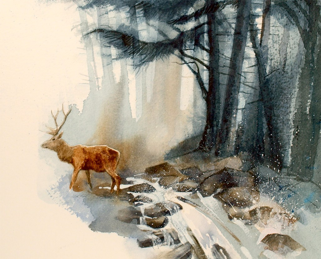 Woodland Wanderer by Steve Bretel