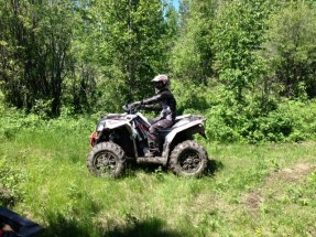 Bush riding