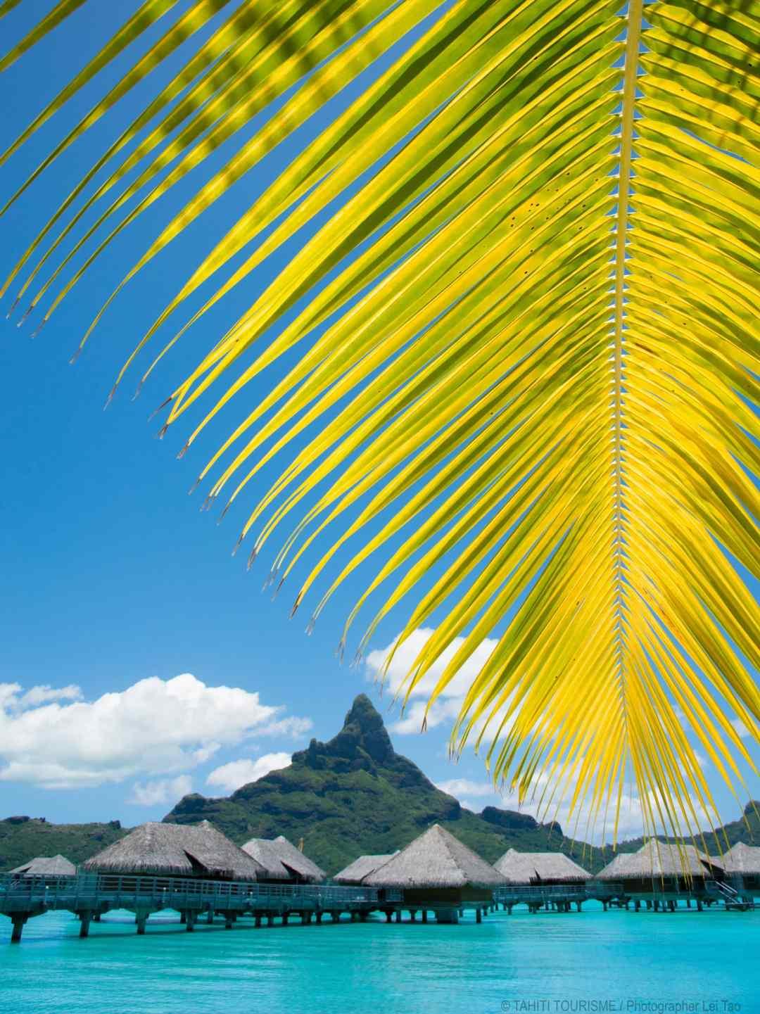 Best time to visit Bora Bora St Regis
