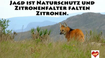 Naturschutz Jagd