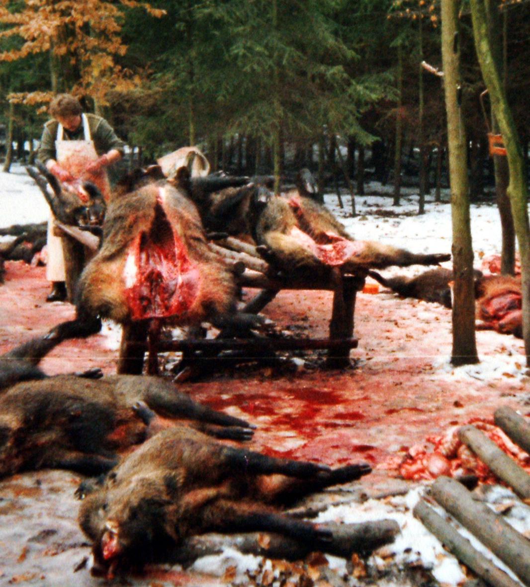 Jäger im Blutrausch