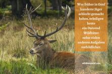 Genf Jagd