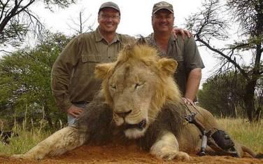 Zahnarzt Walter Palmer (links) mit Kollege und totem Löwen Cecil.