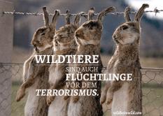 Flüchtlinge Wildtiere