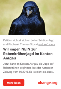 Wir sagen NEIN zur Rabenkrähenjagd im Kanton Aargau