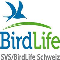 logo-svs-d-blau