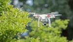 Drohnen bewegen sich im Luftraum und damit dort, wo Vögel bisher weitgehend ungestört waren. Foto © Marcel Burkardt