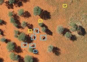 Drohne Afrika