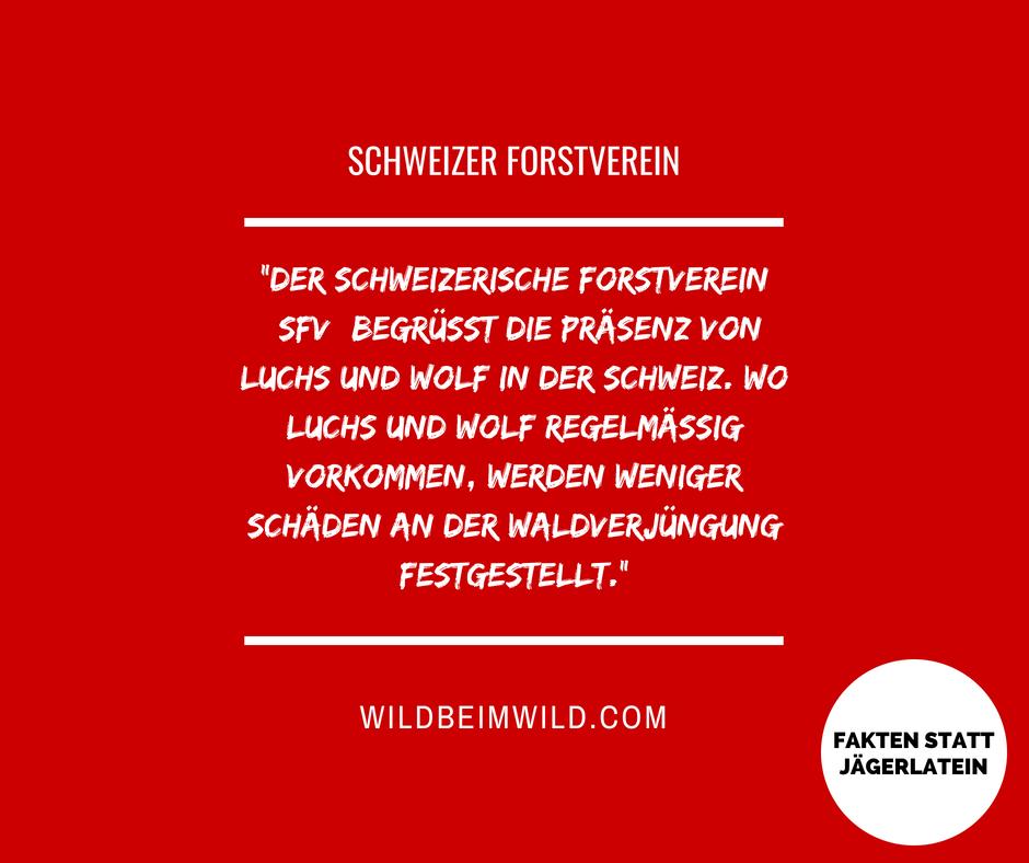 Schweizer Forstverein