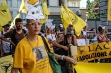 Anti Jagd Demo Florenz 15.9.2018
