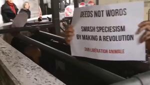 Tierrechtsaktivisten