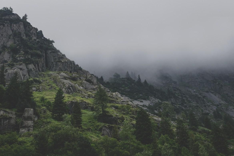Wildnis Schweiz