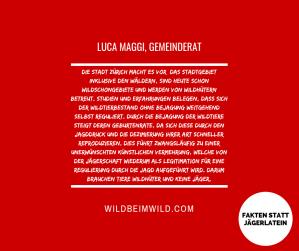 Luca Maggi