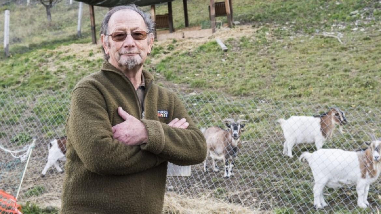 Ziegenbock: Erschoss Hobby-Jäger das Tier?
