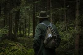 Jagdgesetz Nein